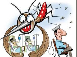 To avoid dengue mosquito keep your home clean
